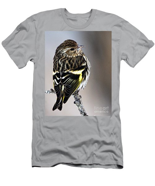 Pine Siskin Men's T-Shirt (Slim Fit) by Larry Ricker