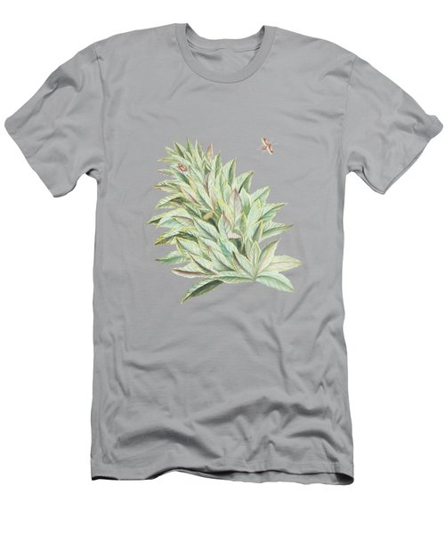 Pineapple Crown With Caterpillar And Butterfly By Cornelis Markee 1763 Men's T-Shirt (Athletic Fit)