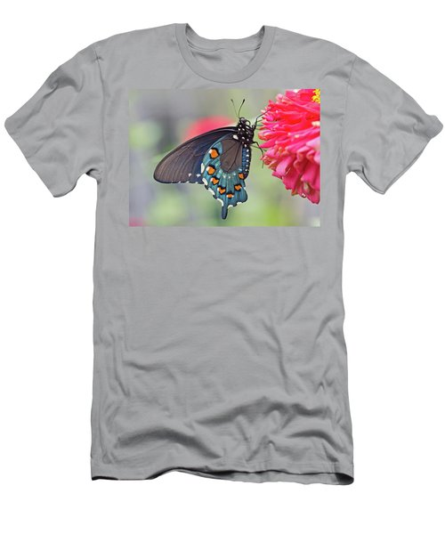 Pipevine Swallowtail Butterfly Men's T-Shirt (Athletic Fit)