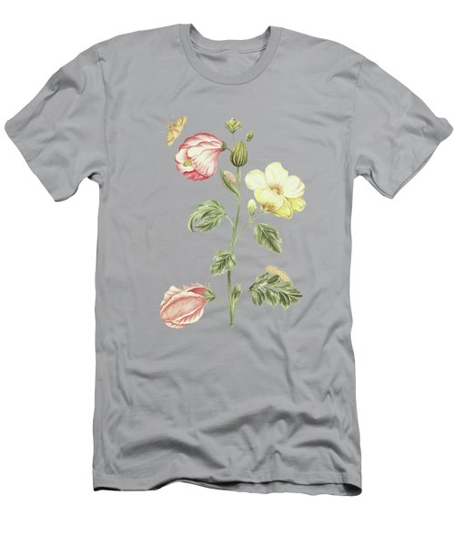 Plant Called Okkerum With Caterpillar And Butterfly By Cornelis Markee 1763 Men's T-Shirt (Athletic Fit)