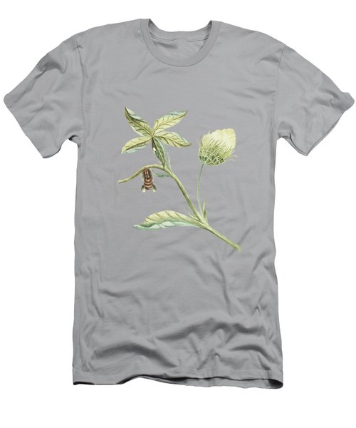 Plant With Flower And Leaves Caterpillar Changing Into A Moth By Cornelis Markee 1763 Men's T-Shirt (Athletic Fit)