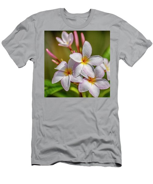 Plumeria 2 Men's T-Shirt (Athletic Fit)