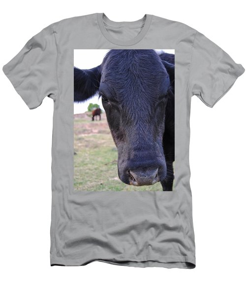 Portrait Of A Cow Men's T-Shirt (Athletic Fit)