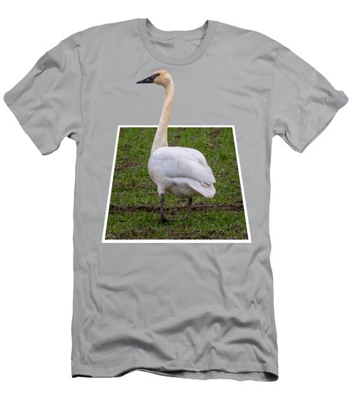 Portrait Of A Swan Out Of Frame Men's T-Shirt (Athletic Fit)