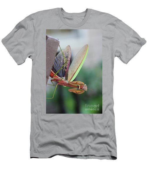 Men's T-Shirt (Slim Fit) featuring the photograph Praying Mantis by Stacey Zimmerman
