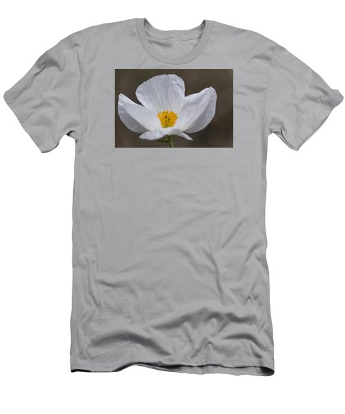 Prickly Poppy Men's T-Shirt (Athletic Fit)
