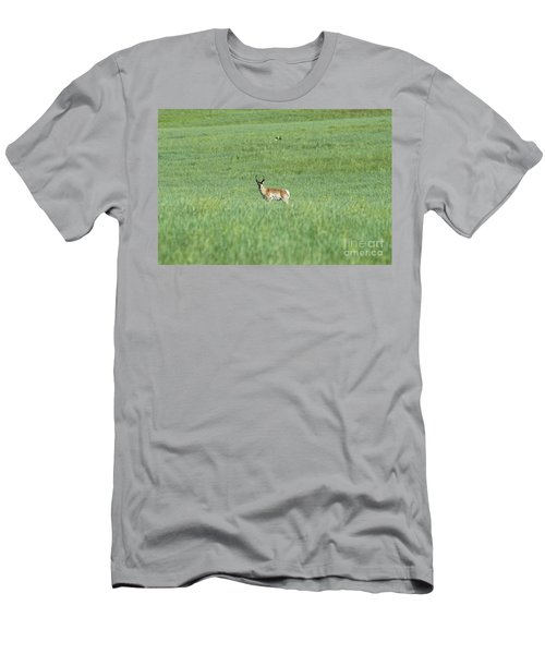 Pronghorn In A Sea Of Green Men's T-Shirt (Athletic Fit)