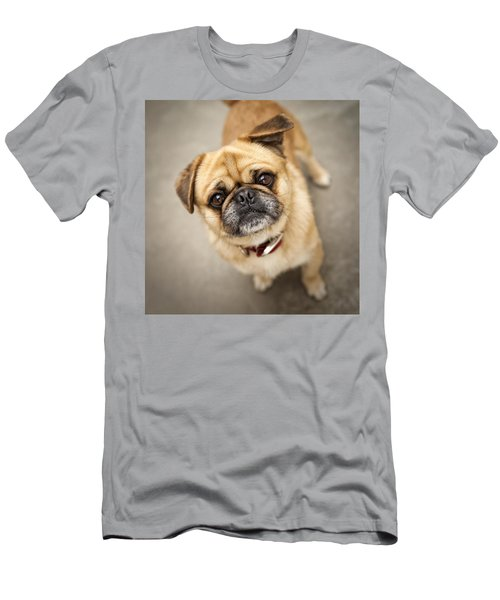 Pug Dog 2 Men's T-Shirt (Slim Fit) by Mike Santis