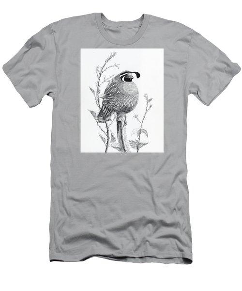 Quail Sentry Men's T-Shirt (Athletic Fit)