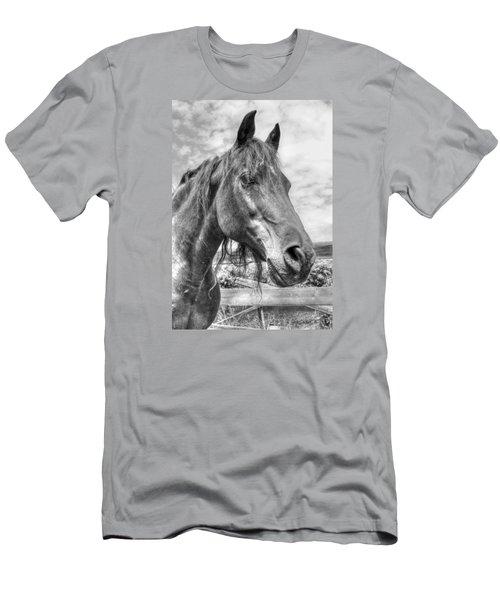 Quarter Horse Portrait Men's T-Shirt (Slim Fit) by Jim Sauchyn
