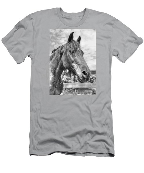 Quarter Horse Portrait Men's T-Shirt (Athletic Fit)