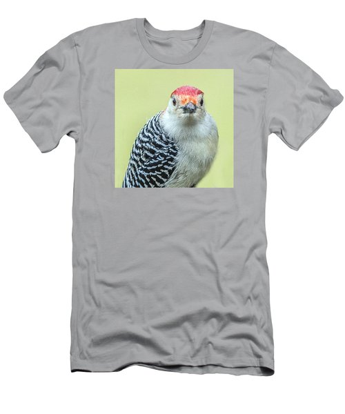Red Bellied Woodpecker Portrait Men's T-Shirt (Athletic Fit)