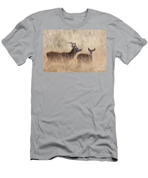 Red Deer Stag And Hind Men's T-Shirt (Athletic Fit)