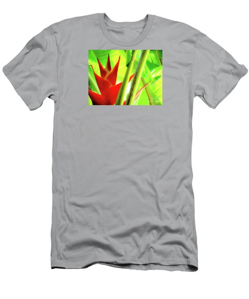 Red Heliconia Men's T-Shirt (Athletic Fit)