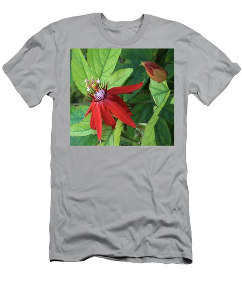 Men's T-Shirt (Slim Fit) featuring the photograph Red Passion Bloom by Marna Edwards Flavell