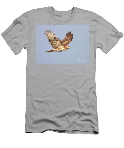 Red Tailed Hawk 20100101-1 Men's T-Shirt (Athletic Fit)