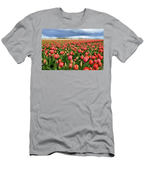 Red Tulip Field Men's T-Shirt (Athletic Fit)