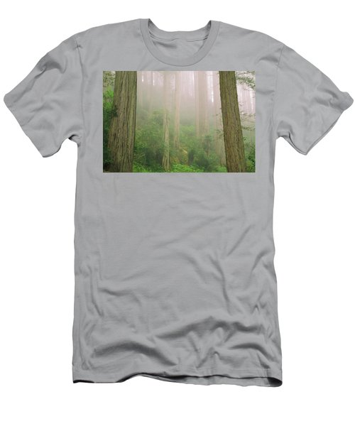 Redwoods Fog Men's T-Shirt (Athletic Fit)
