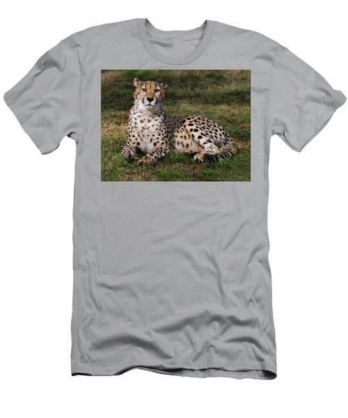 Regal Pose Men's T-Shirt (Athletic Fit)
