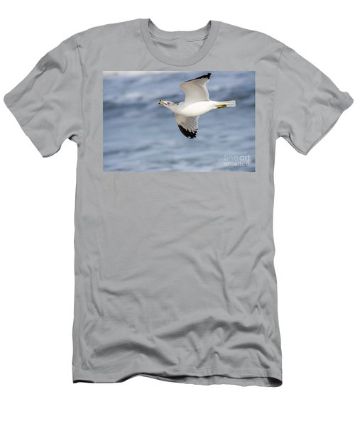 Ring-billed Seagull Looking For Attention Men's T-Shirt (Slim Fit) by Debra Martz