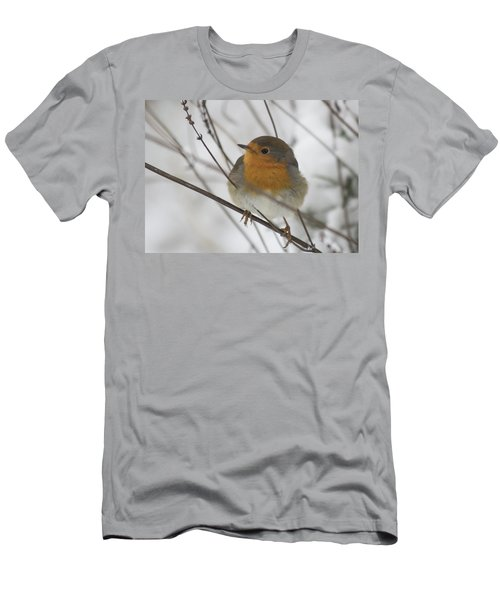 Robin In The Snow Men's T-Shirt (Athletic Fit)