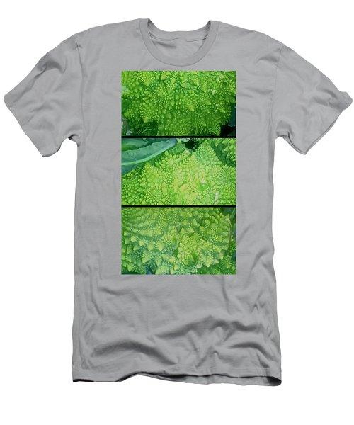 Romanesco Men's T-Shirt (Slim Fit) by Karl Reid