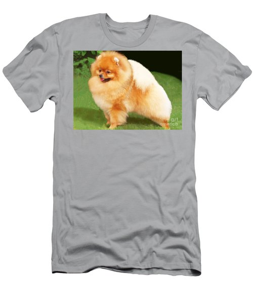 Sable Pomeranian Men's T-Shirt (Athletic Fit)