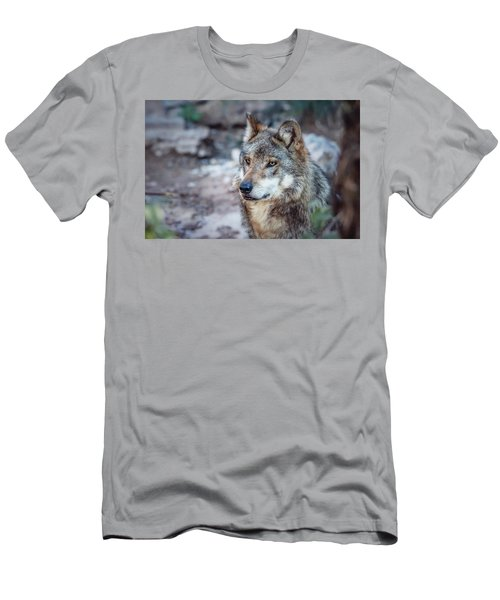 Sancho Searching The Area Men's T-Shirt (Slim Fit) by Elaine Malott