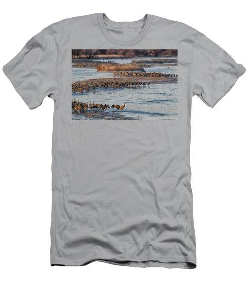 Sandhill Crane Platte River  Men's T-Shirt (Athletic Fit)