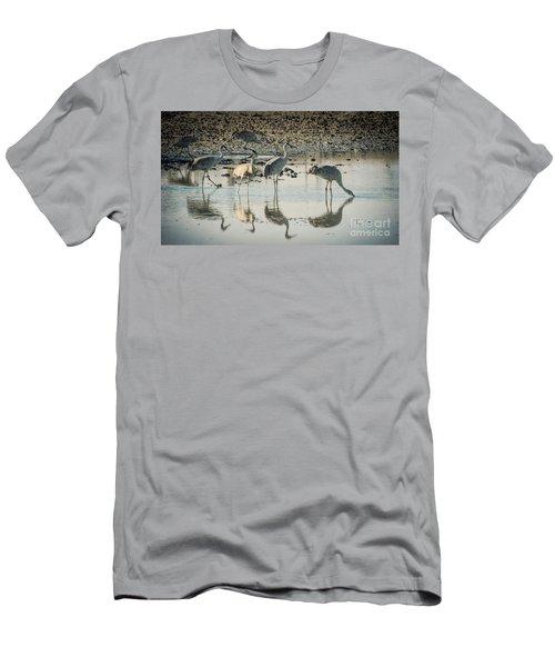 Sandhill Crane Reflections Men's T-Shirt (Athletic Fit)