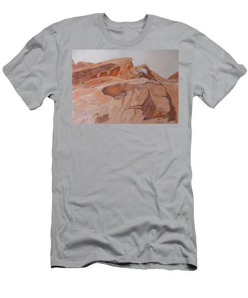 Sandstone Rainbow Men's T-Shirt (Slim Fit)