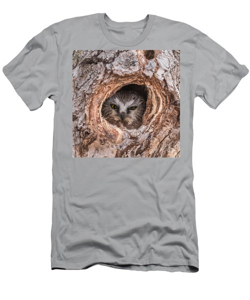 Saw-whet Secret Men's T-Shirt (Slim Fit) by Yeates Photography