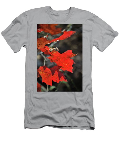 Scarlet Autumn Men's T-Shirt (Athletic Fit)
