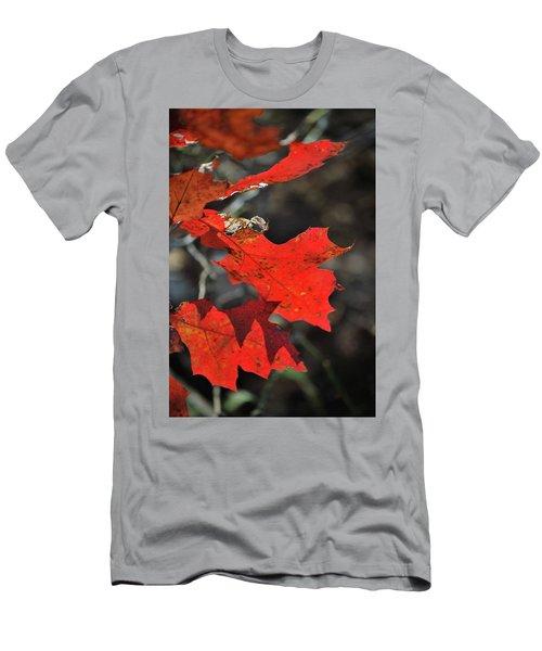 Scarlet Autumn Men's T-Shirt (Athletic Fit)