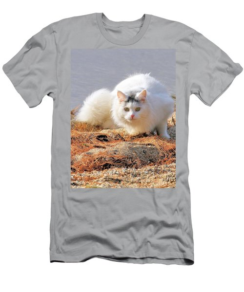 Men's T-Shirt (Athletic Fit) featuring the photograph Shore Kitty by Debbie Stahre