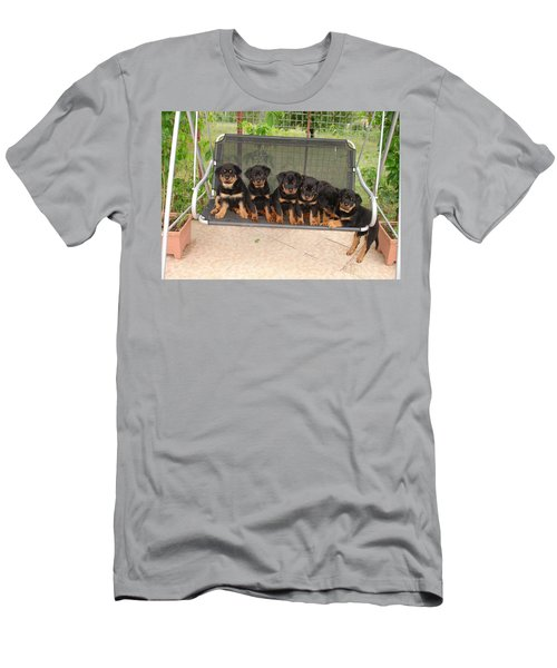 Six Rottweiler Puppies Lined Up On A Swing Men's T-Shirt (Athletic Fit)