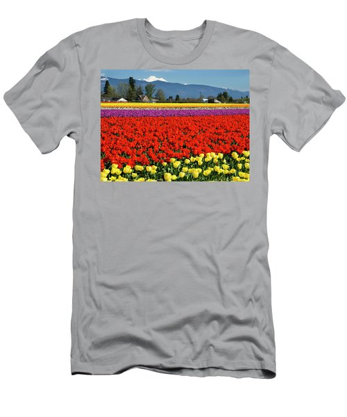 Skagit Valley Tulip Fields Men's T-Shirt (Athletic Fit)
