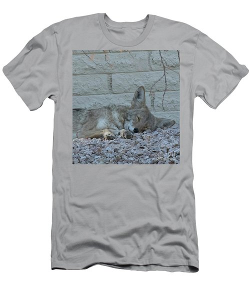 Sleepy Li'l Coyote Men's T-Shirt (Slim Fit) by Anne Rodkin