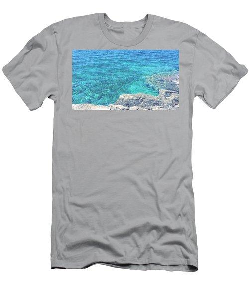 Smdl Men's T-Shirt (Athletic Fit)