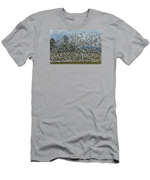 Snow Geese Convention Men's T-Shirt (Athletic Fit)