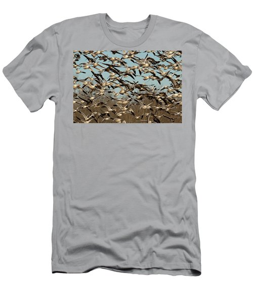 Snow Geese Men's T-Shirt (Athletic Fit)
