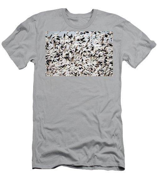 Snow Goose Blizzard Men's T-Shirt (Athletic Fit)