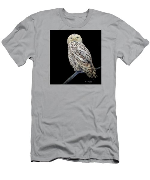 Snowy Owl On Black Men's T-Shirt (Slim Fit) by Constantine Gregory