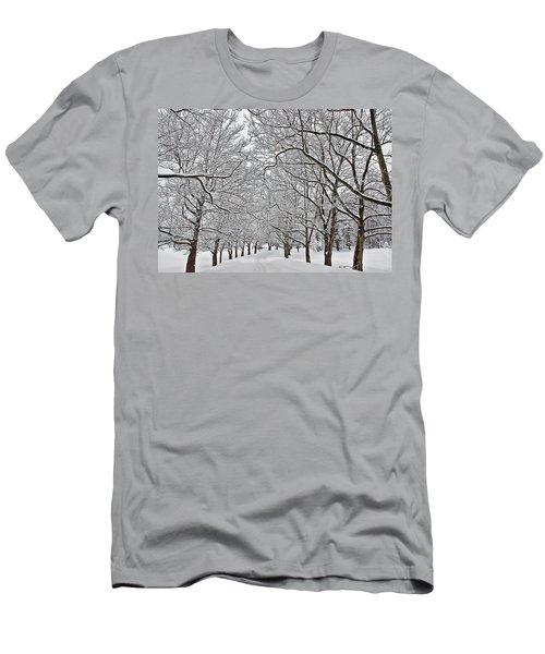 Snowy Treeline Men's T-Shirt (Athletic Fit)