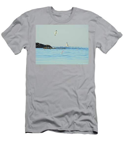 Soaring Seagull Men's T-Shirt (Athletic Fit)