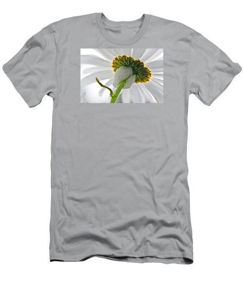 Spittle Bug Umbrella Men's T-Shirt (Slim Fit) by Adria Trail