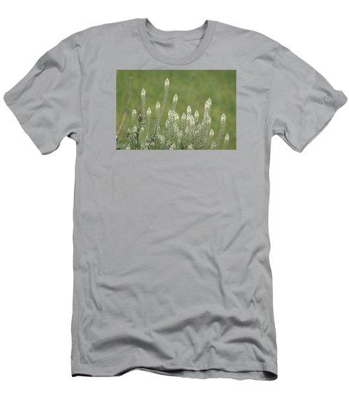 Spring Rockets Men's T-Shirt (Slim Fit) by Goyo Ambrosio