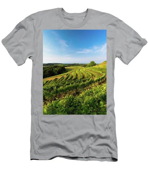 Spring Vinyard Men's T-Shirt (Athletic Fit)