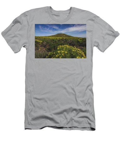 Spring Wildflowers Blooming In Malibu Men's T-Shirt (Athletic Fit)