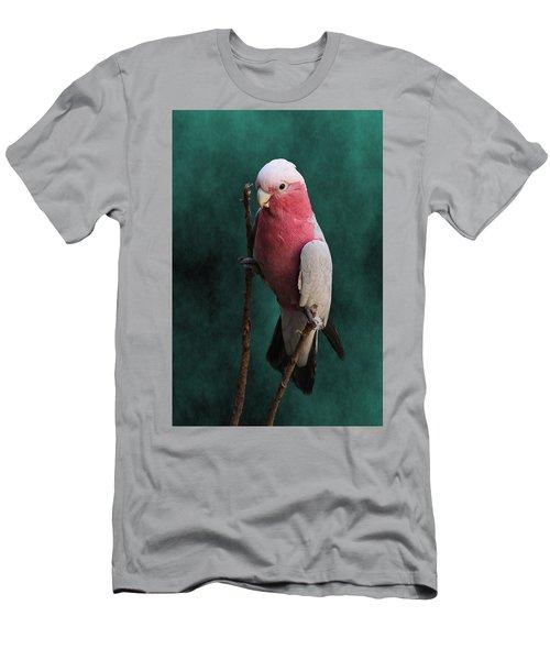 Stiltwalker - Roseate Cockatoo Men's T-Shirt (Athletic Fit)
